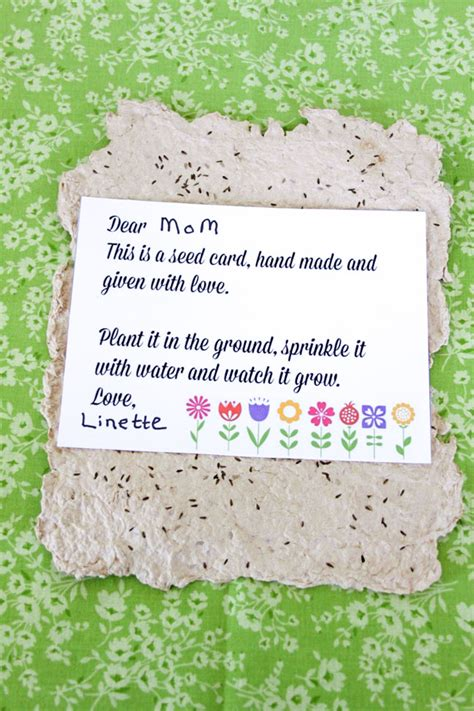 how to make seed cards handmade paper seed cards