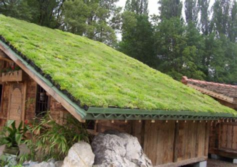 green roofs bringing nature to your doorstep innovative green roof solutions and storm water management