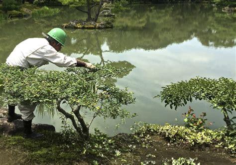 giardini giapponesi il segreto di un perfetto giardino giapponese vivere zen