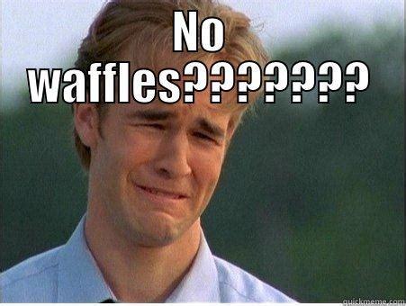 Waffles Meme - no waffles quickmeme