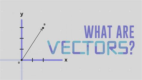 What Is A what is a vector david huynh