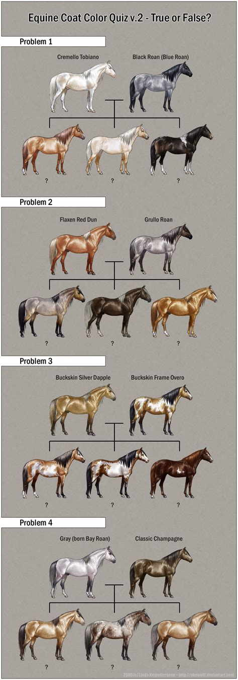 do horses see color 5 best images of markings chart draft size