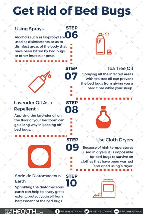 effective home remedies   rid  bed bugs