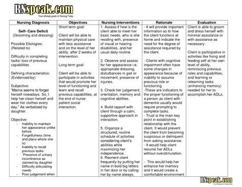 care plan template for dementia nanda nursing diagnosis 2013 list medicinebtg