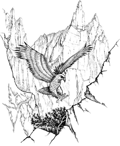 Coloring Page Of An Eagle S Nest   free coloring pages of eagle nest