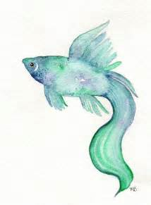 Betta Decorations 1000 Ideas About Watercolor Fish On Pinterest