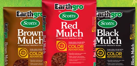 home depot sale plants mulch more southern savers