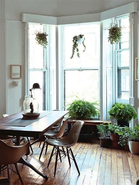 Plants On Windows Hanging Plants In Windows Deco Studio