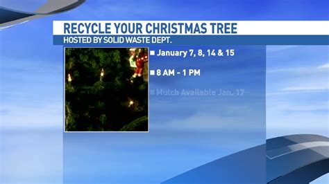 get your christmas tree recycled after the holidays woai