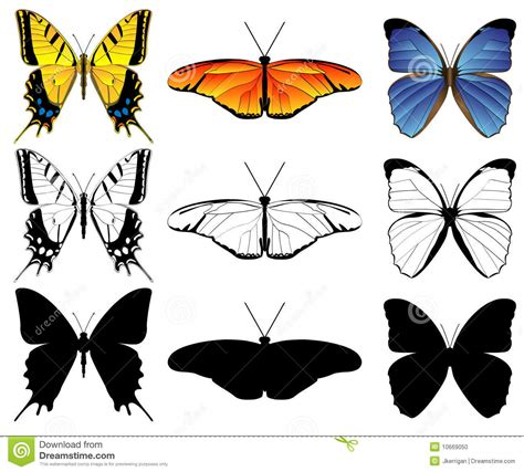 Butterfly Set butterfly set stock vector illustration of moths