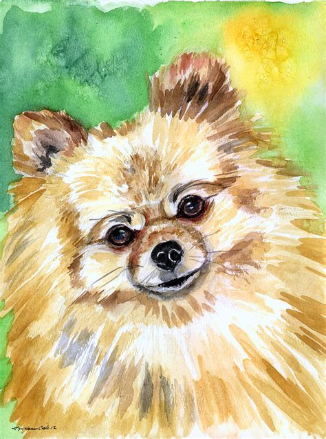 pomeranian painting pomeranian painting by lyn cook