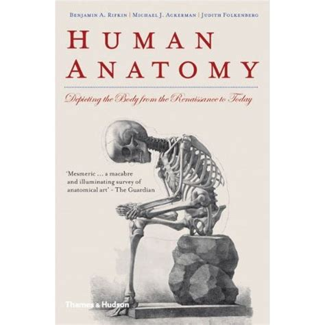 anatomy picture book image gallery anatomy book