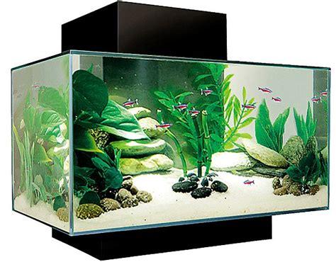 aquarium design uk image gallery home aquarium uk