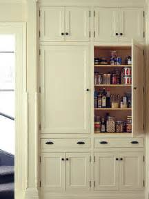 Kitchen Storage Furniture Pantry by Shallow Pantry Cabinets Houzz