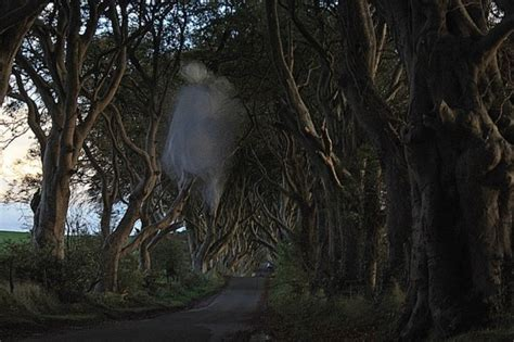 the ghosts of ireland a collection of ghost stories across the emerald isle books ghost photos 2015 ghosts and ghouls