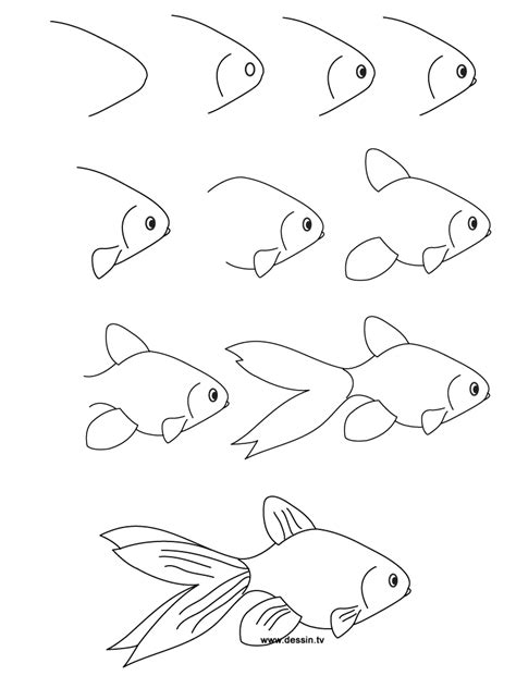 How To Draw Fish Drawing Goldfish
