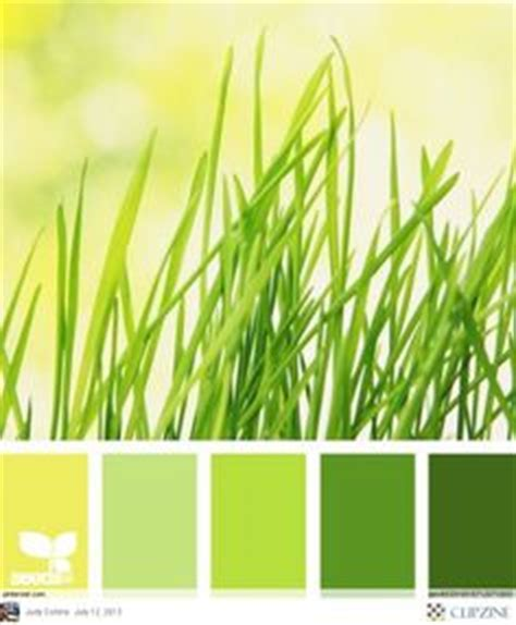 lemongrass color the world s catalog of ideas