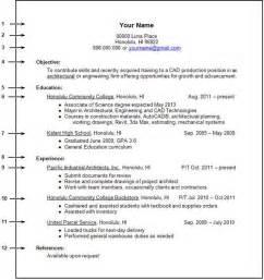 job experience resume examples