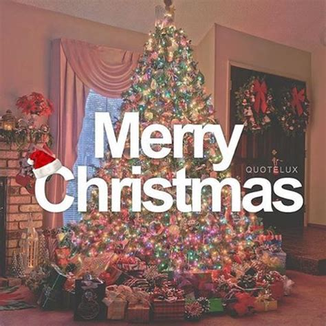 merry christmas quote  christmas tree pictures   images  facebook tumblr