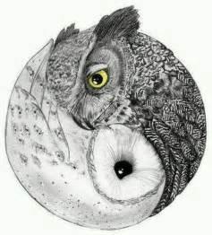 Barn Owl Meaning Owl Ying Yang Tattoos Pinterest Yin Yang Tatuajes