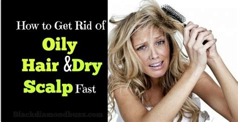 get rid of dog hair in house how to get rid of hair in house 28 images how to get rid of greasy hair http www