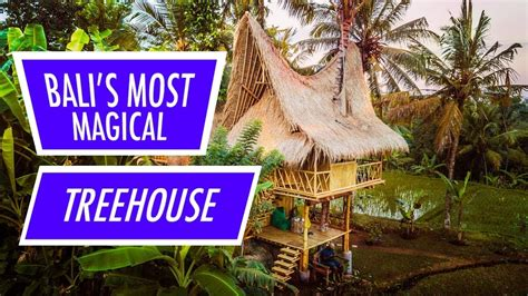 airbnb ubud treehouse bali s most magical airbnb treehouse youtube