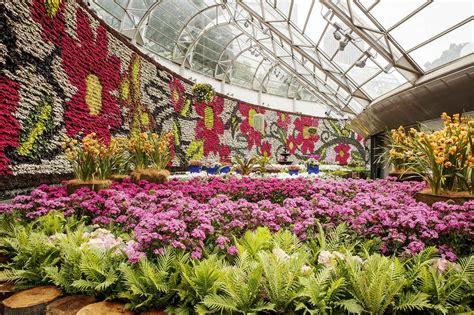 botanic gardens plant sale all about flowers plant sale sydney