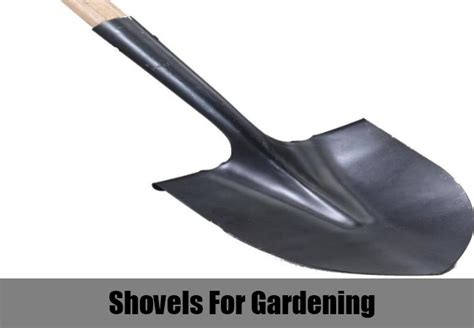 7 must have gardening tools and equipment how to choose gardening tools and equipment diy