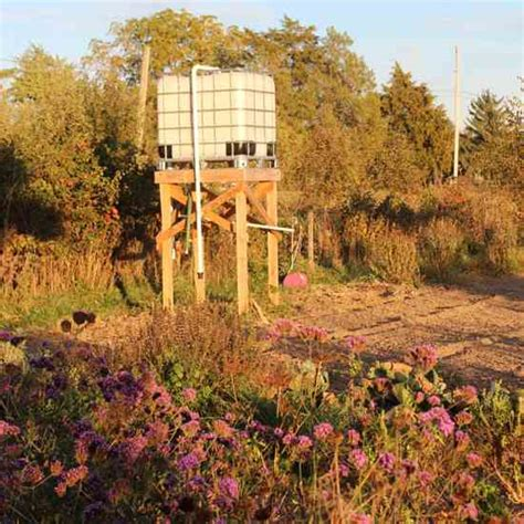 conserving water   rainwater cistern tank mother