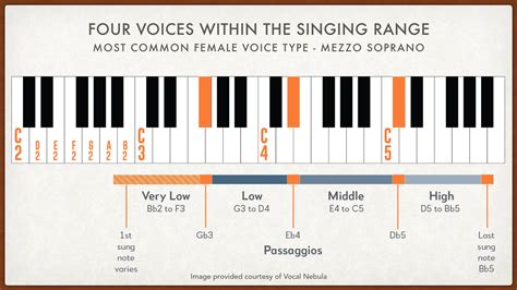 best vocal range find your vocal range and voice type test