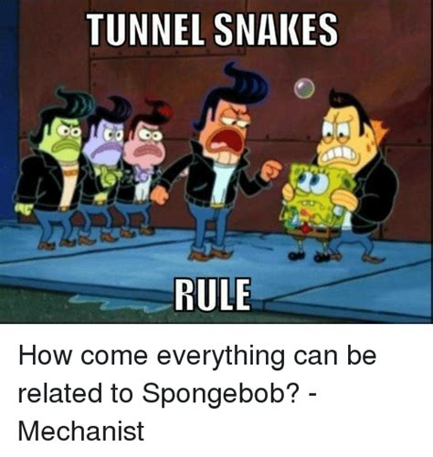 how to a to come 25 best memes about tunnel snakes tunnel snakes memes