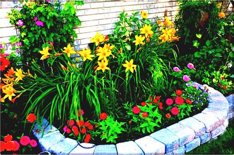 backyard design app instant impression patio designs small