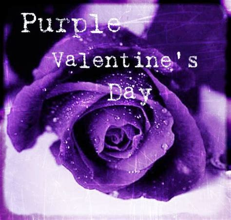 purple valentine s day time for the holidays