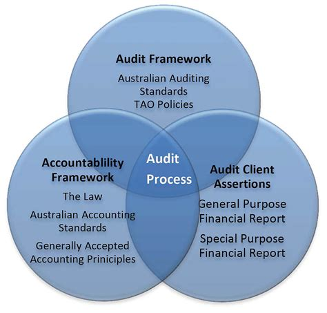 auditing interno the audit process thedruge390 web fc2