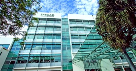 Mba Agribusiness Scholarships by Opportunity For Youth Insead Syngenta Mba