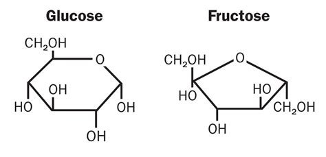 Colla Vs Glycogen fructose and chronic health problems is fructose a key