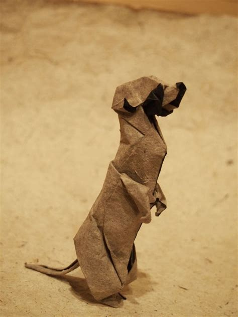 origami meerkat 312 best images about origami on