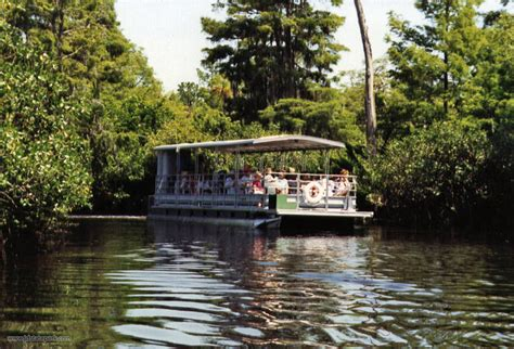 boat tour florida loxahatchee river boat tours jonathan dickinson state