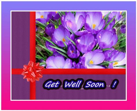 Get Well Ecards Free Animated get well soon free get well soon ecards greeting cards