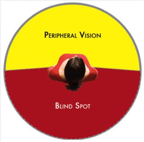 Vision Blind Spot advanced situational awareness 1 firing pen