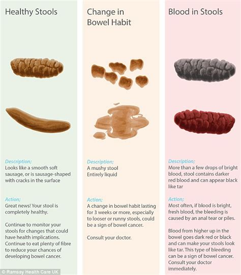 what color should your stool be poo chart reveals what s normal and what could be a