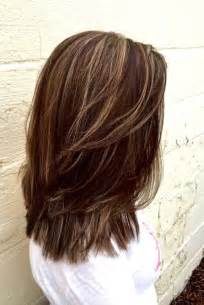 highlights colors strawberry highlights lowlights brown hairs