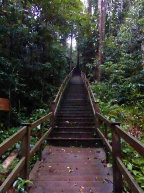 escaping the velvet rut an adventurer s guide to chasing your dreams books a jungle adventure in brunei velvet escape