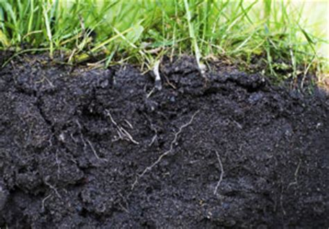 Soil Cross Section by Possible Pollutants Assessed In Minutes