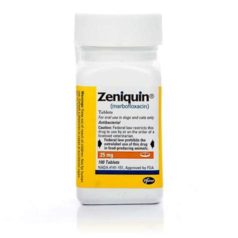 zeniquin for dogs 7 of the top cystitis treatments petcarerx