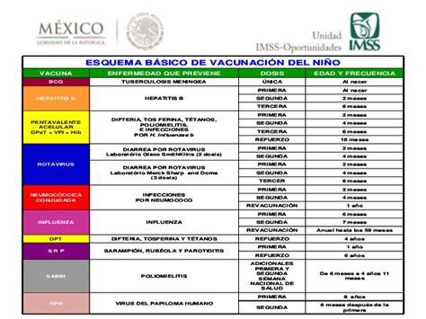cuadro de vacunas esquema de vacunacion