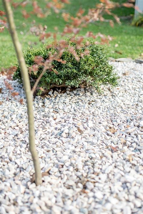 Diy Japanese Rock Garden How To Create A Diy Zen Inspired Rock Garden 187 Green Diy