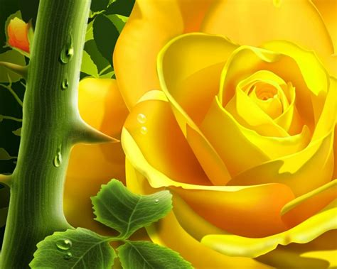 asombrosas imagenes de rosas amarillas imagenes de rosa amarilla 3d 1280x1024 fondos de pantalla y