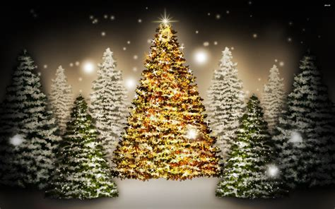 Cristmas Tree christmas trees 823867 walldevil