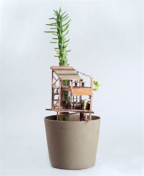 mini house plants jedediah corwyn voltz builds tiny treehouses in succulent